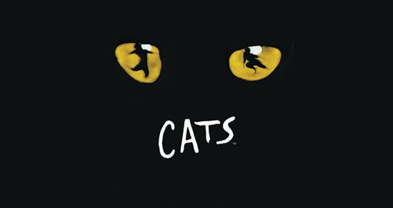 Musicalfahrt Cats